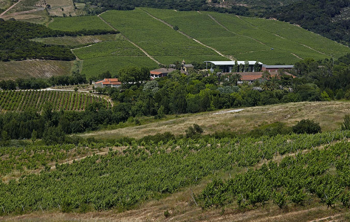 Quinta da Romeira, Sogrape