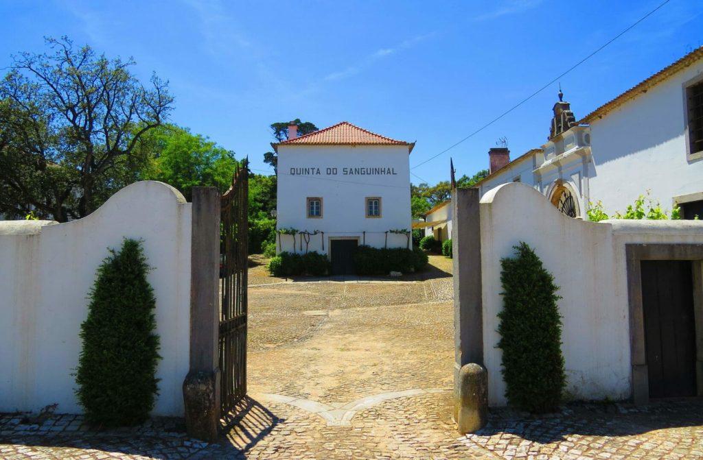 Entrada da Quinta do Sanguinhal