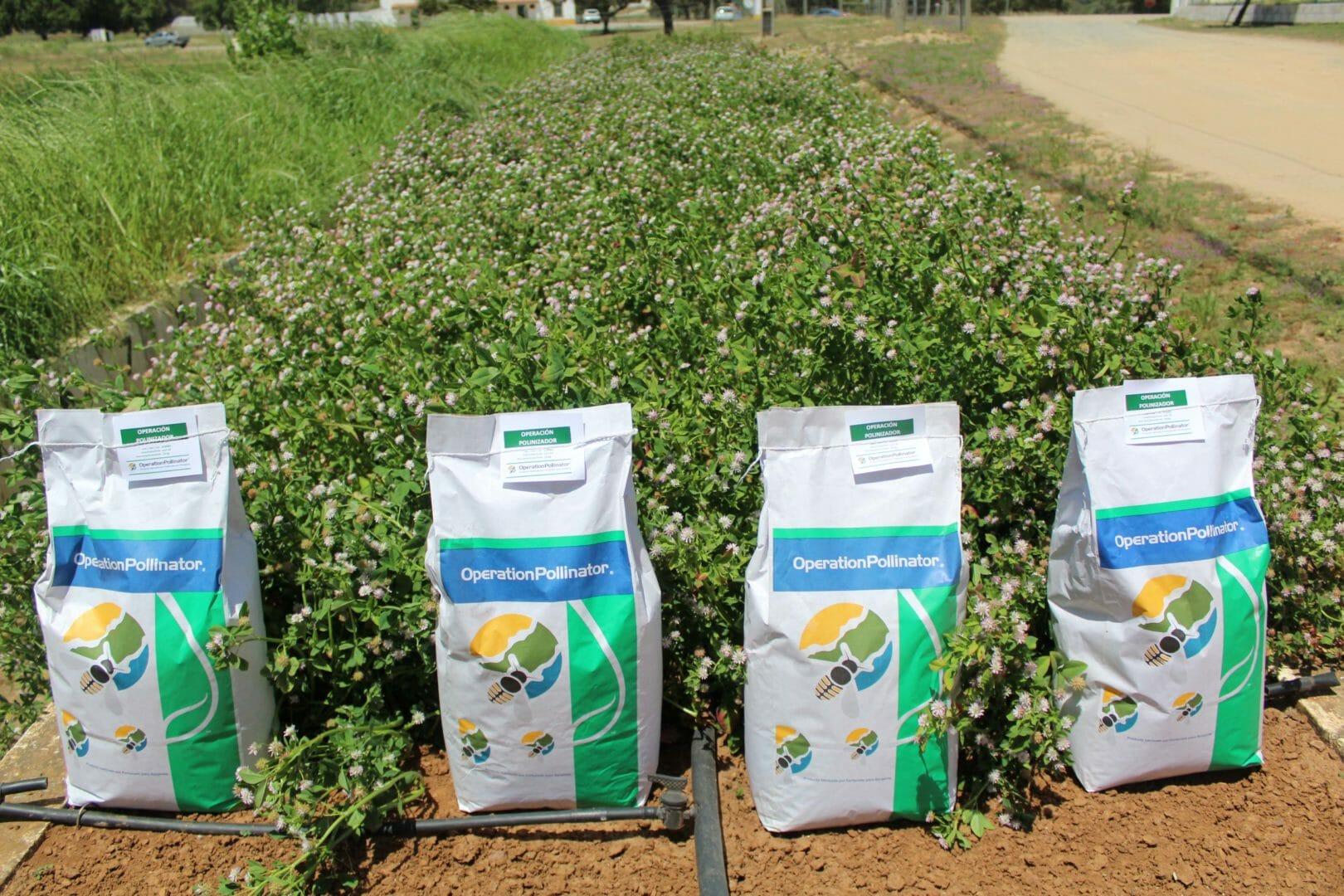 Operation Pollinator - produtos ensacados