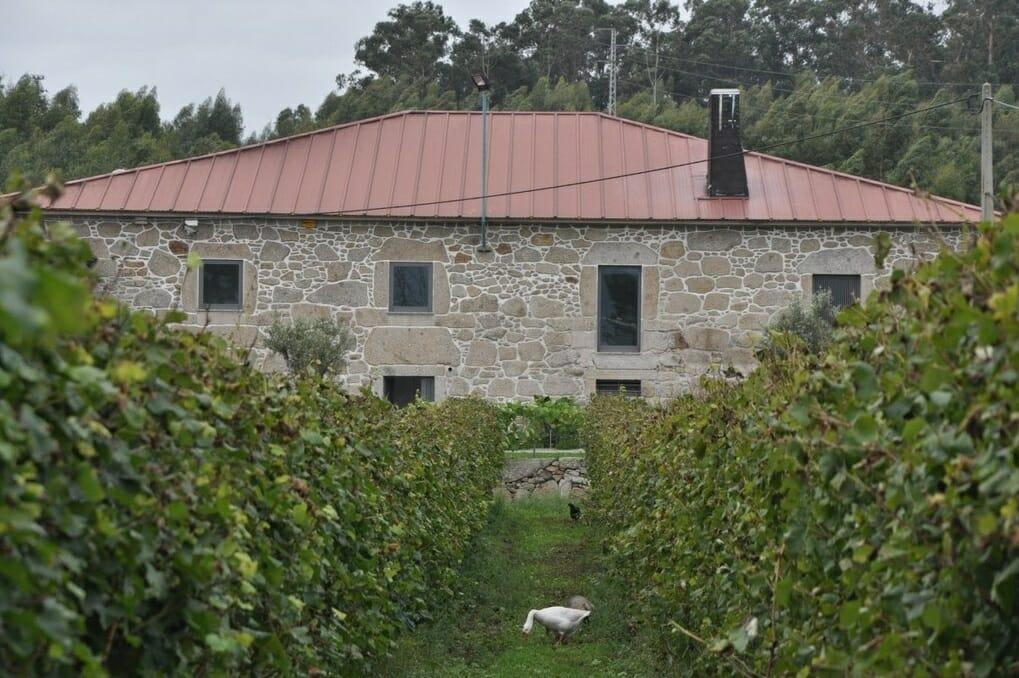 Quinta de Gomariz: casa e vinha