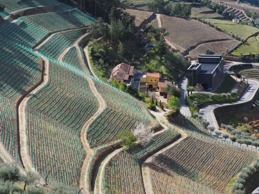 Quinta da Gaivosa com novas colheitas mas atentos à tradição.
