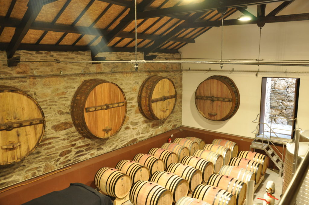 Foz do Tua vinho costureiro