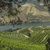 Kopke vinho do Porto