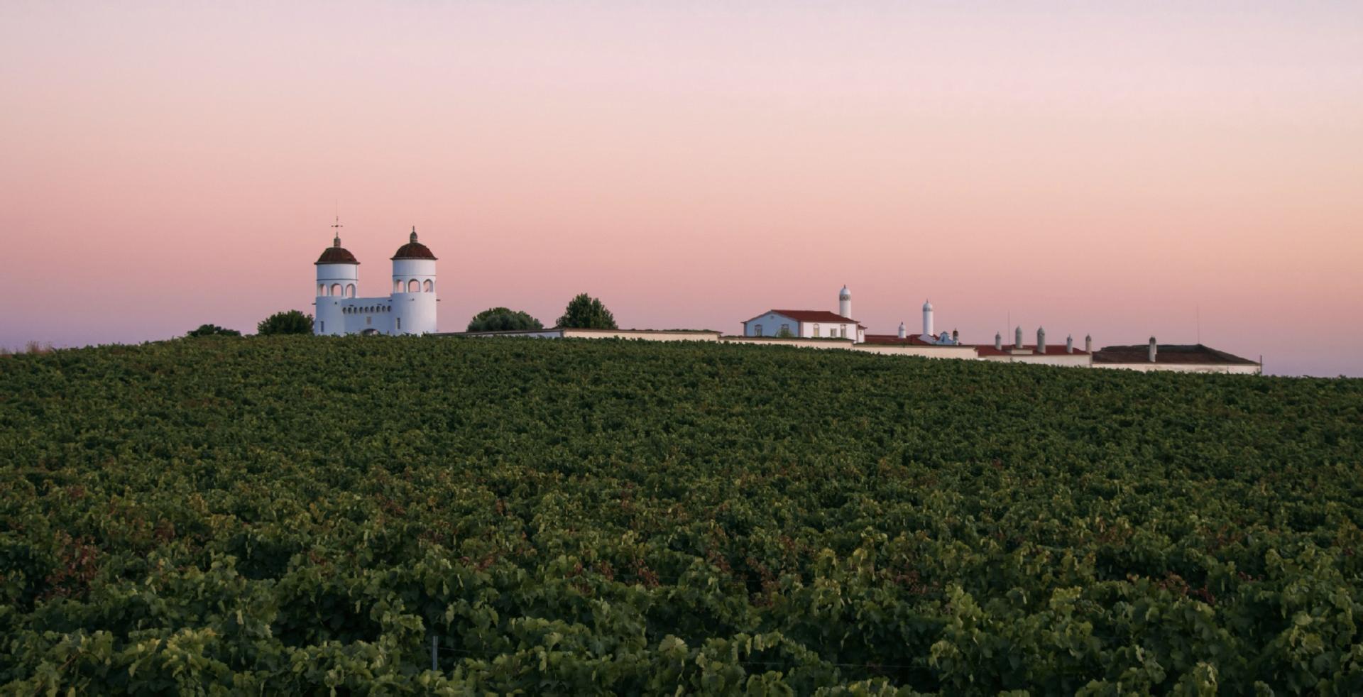 Abegoaria Vidigal Wines